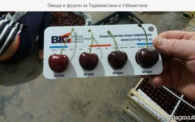 Cherry (air delivery) Черешня
