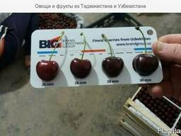 Cherry (air delivery) Черешня