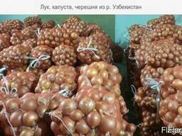 Лук, капуста, огурцы, консервация из Р. Узбекистан - photo 1