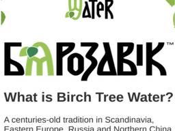 Birch juice, 100% natural, PET bottle. Сок березовый, 100% натуральный, ПЭТ-бутылка