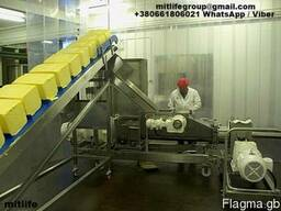 Butter wholesale Dairy Butter 72, 5 % 82, 5% Масло сливочное