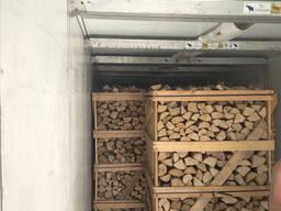 Firewood wholesale, OAK, hornbeam, ash - photo 3