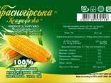 Масло кукурузное не рафинированное - photo 2