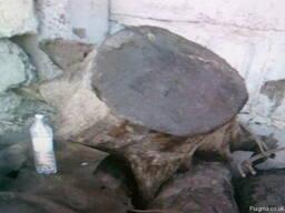 Мореный дуб экспорт - photo 2