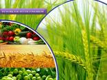 Pesticide manufacturer and supplier worldwide - photo 1