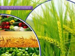 Pesticide manufacturer and supplier worldwide